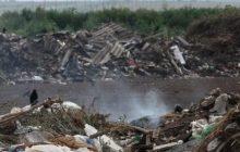 В Тольятти убрали две несанкционированные свалки