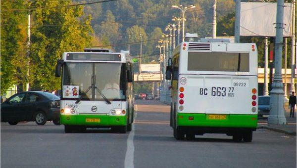 В тольяттинские автобусы и троллейбусы не пустят больше 14 человек