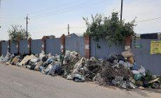 С дачных кооперативов на Федоровских лугах начали вывозить мусор