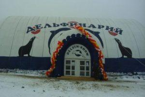 Зоозащитники пикетировали дельфинарий в Тольятти