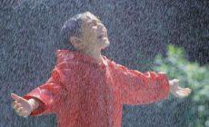 Гидрометцентр пообещал дождливые выходные
