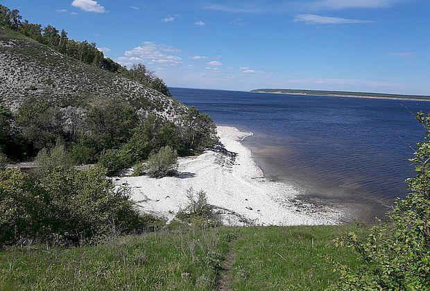 Два памятника природы может быть уничтожено в ходе строительства моста Тольятти-Климовка