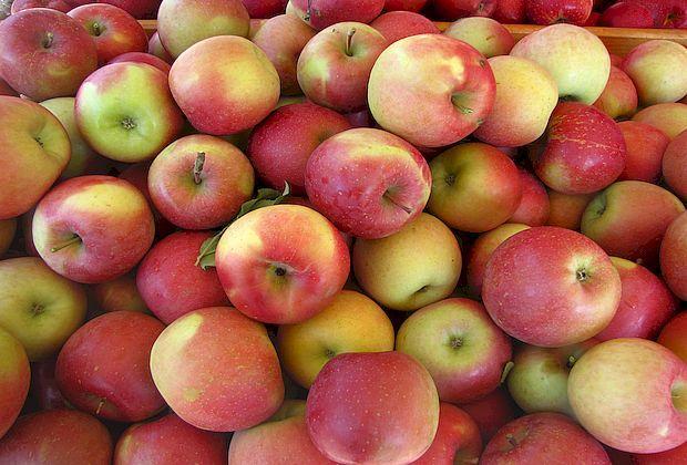 В Самаре сожгли 200 кг польских яблок