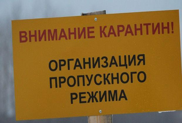 В Хрящевке введен карантин