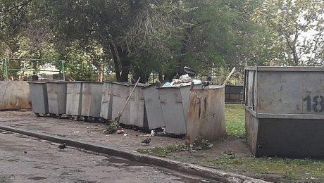 МинЖКХ препятствует активистам в контроле замеров мусора для определения нового норматива