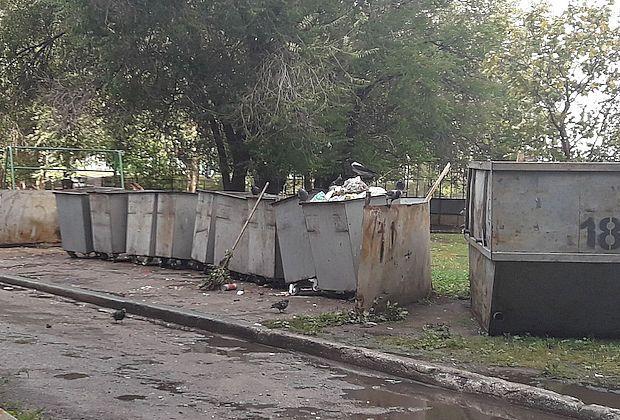 Первая мусорная война или схватка двух волан-де-мортов