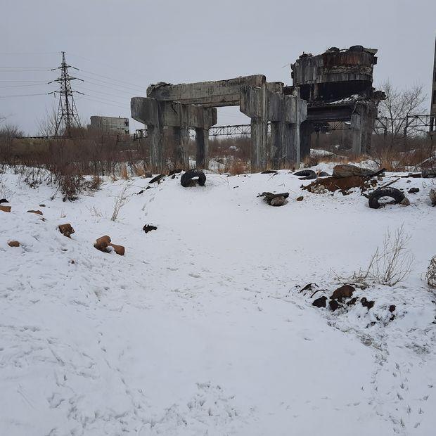 «Не озеро, а лужа»: Денис Волков прокомментировал обвинения в свой адрес