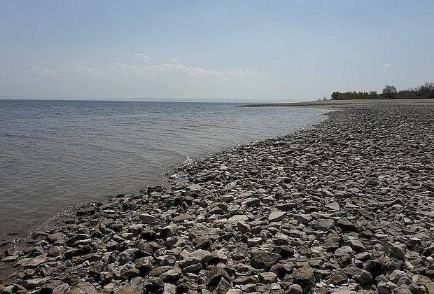 Эколог: «Из-за падения уровня воды мы останемся без рыбы»