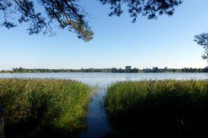 Объявлен сбор волонтеров для участия в очистке озера Паршино