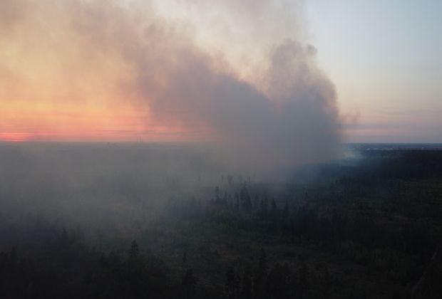 Лесной пожар вновь разгорелся в Тольятти