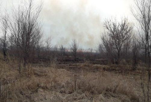 Московский проспект заволокло дымом из-за сильного пожара в поле