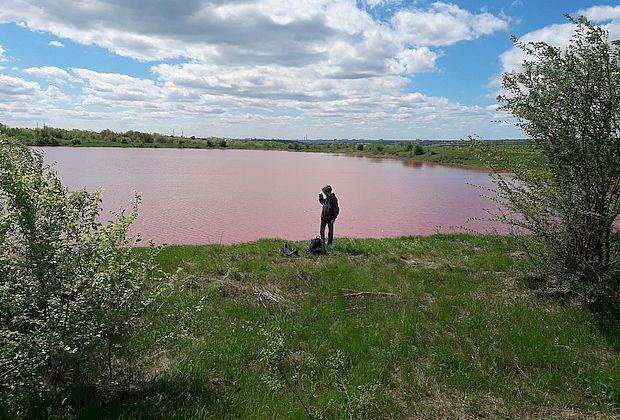 Розовые озера: как доехать?