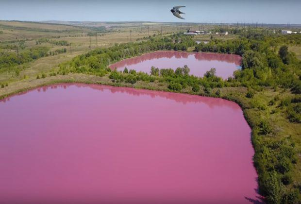 Под Самарой нашли розовые озера