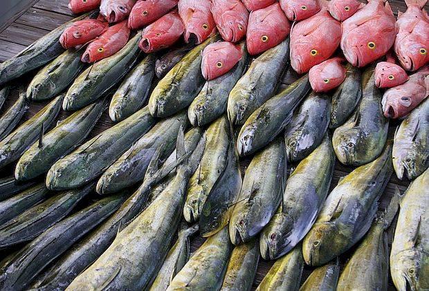 Из торговой сети изъято восемь партий опасной рыбы