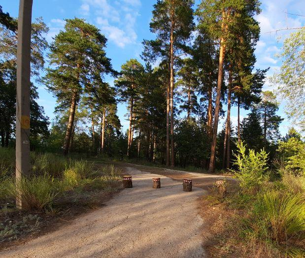 На въезде в тольяттинский лес начали устанавливать шлагбаумы