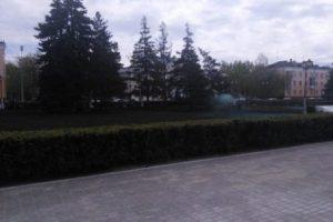 """В Тольятти """"Парки города"""" войдут в """"Зеленстрой"""""""
