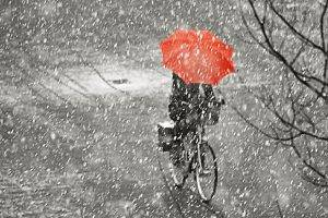 Метеорологи обещают снег с дождем до конца недели