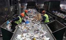 Регион выйдет на стопроцентную сортировку отходов через четыре года
