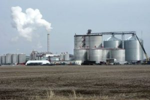Жители Тольятти обсудят проект строительства спиртзавода