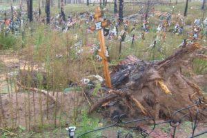 10 вопросов о тольяттинских кладбищах