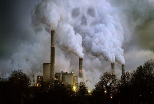 Восемь главных экологических угроз Самарской области по мнению председателя российской Зеленой лиги