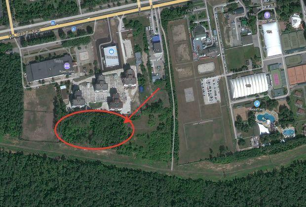 В Тольятти пройдут публичные слушания по строительству гостиницы у леса