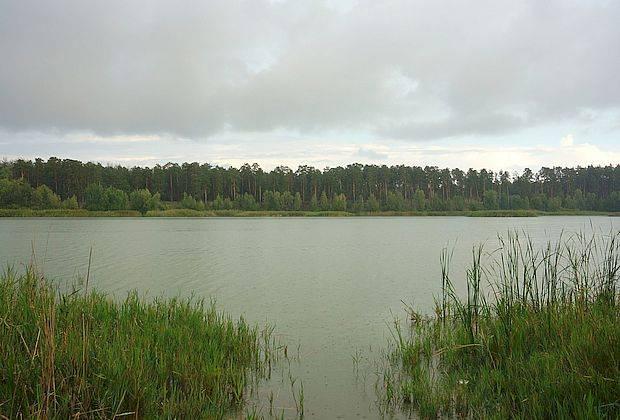 Васильевские озера обследуют для определения их статуса