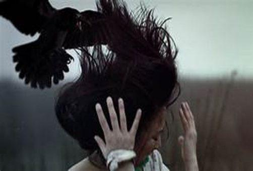 Тольяттинцев предупредили об опасности нападения ворон