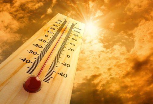 В Самарской области установится экстремальная жара